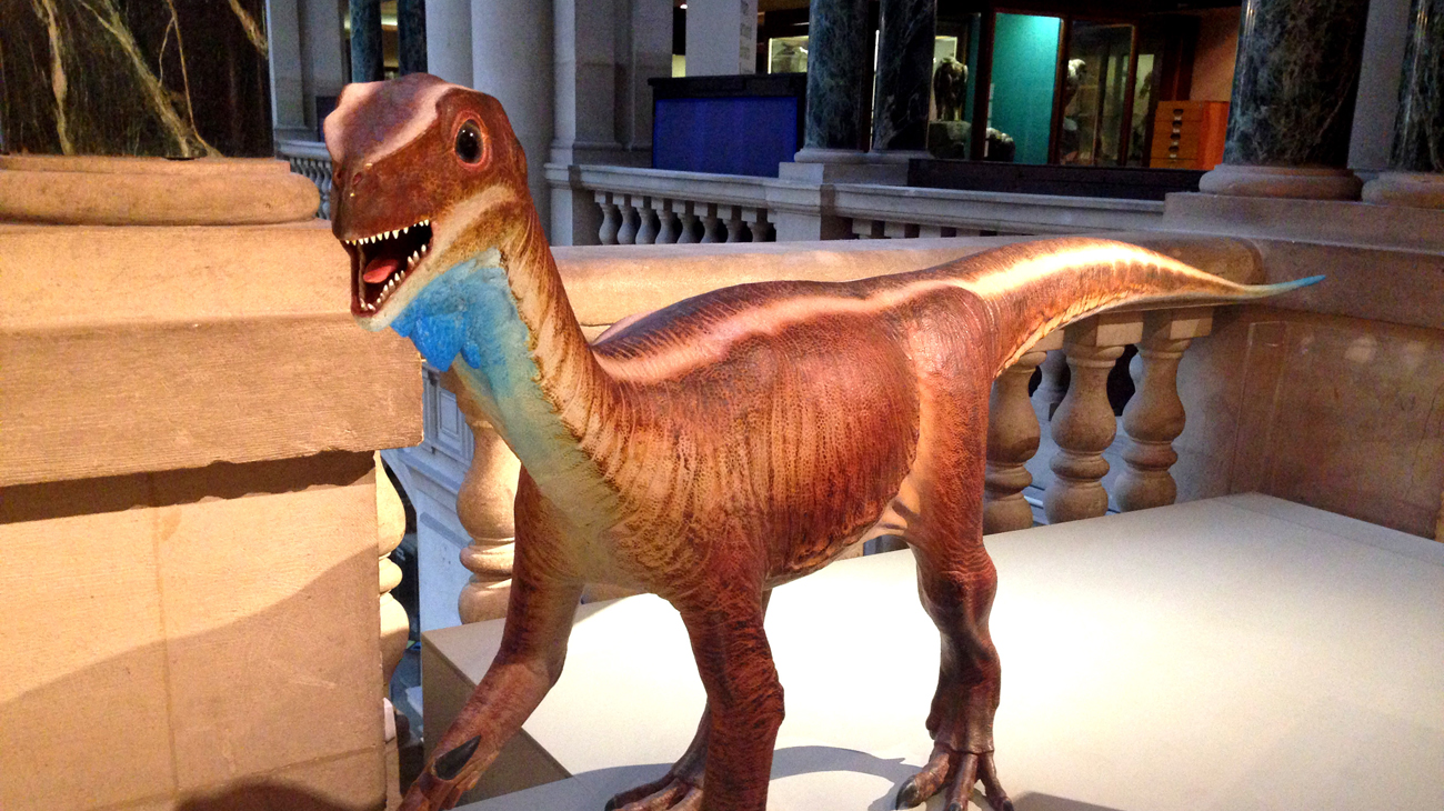 Photo of the bristol dinosaur model at bristol museum