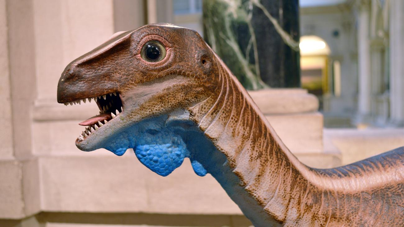 Dinosaurs: Photo of the Bristol Dinosaur
