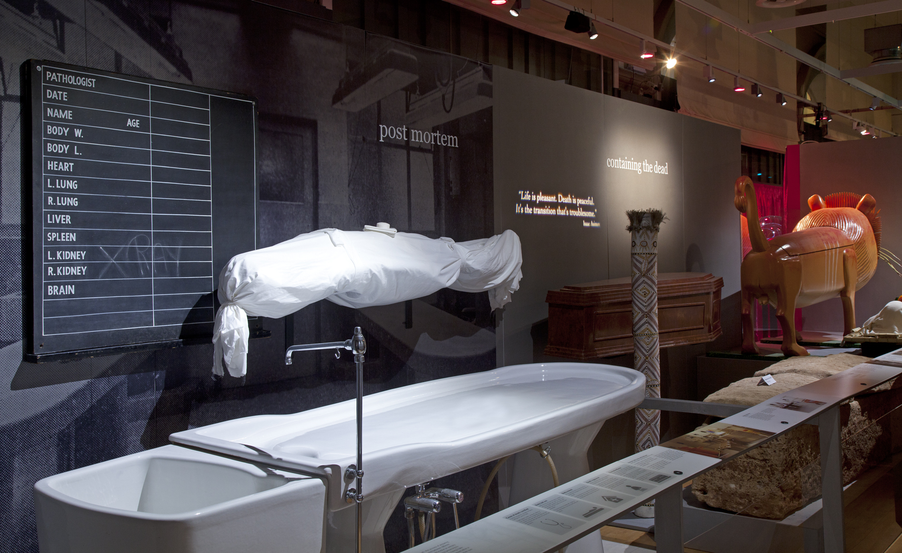 death: the human experience | Bristol Museum & Art Gallery