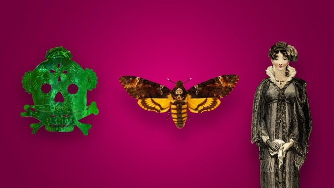 Image of a green skull and crossbones, death's head hawk moth and mourning doll on a pink background