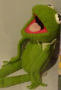 Photo of a kermit the frog soft toy