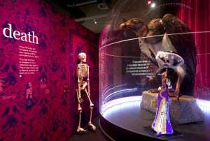 Skeleton, vulture and Mexican figurine on display in exhibition