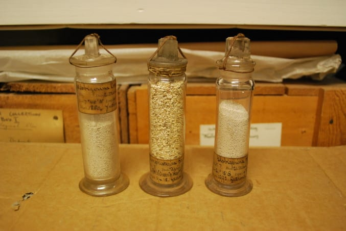Three examples of original glass vials containing deep sea sediment collected on the HMS Challenger expedition (1872 – 1876). The labels indicated the name of the sediment, what station number it was collected from and from how deep, in fathoms!