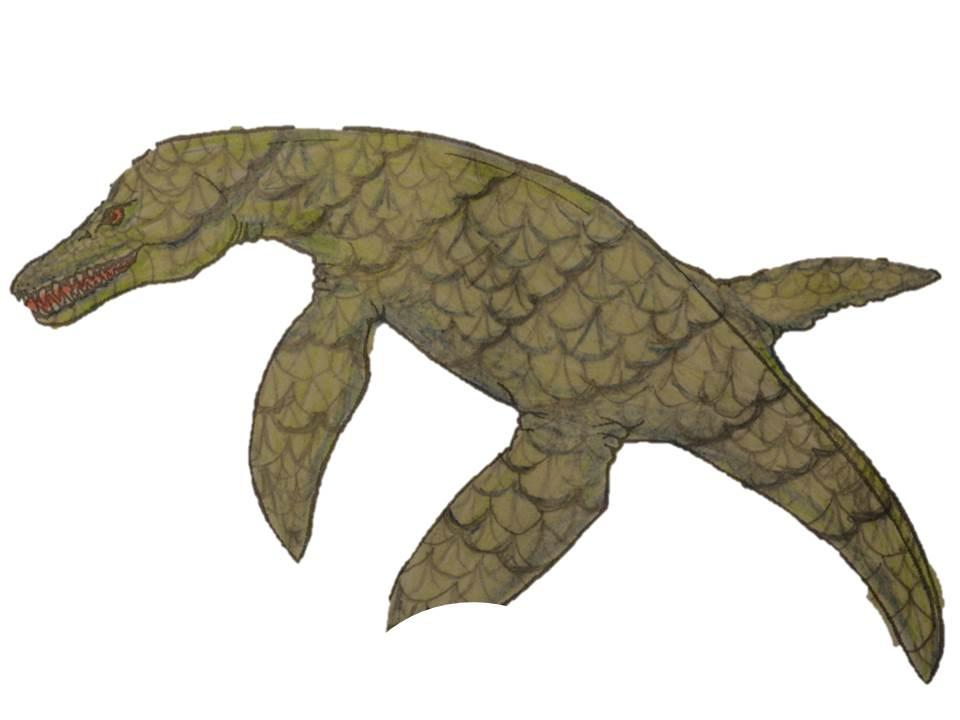 A Pliosaur designed to have dark green scaly skin like a crocodile.