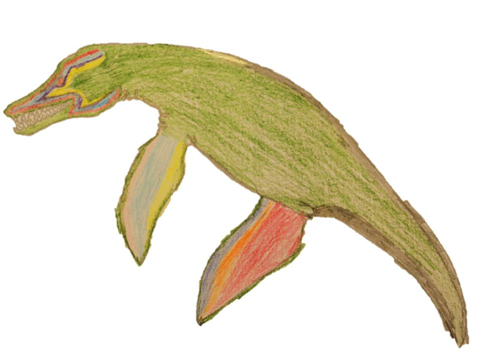 A Pliosaur designed to have green skin and orange flippers.