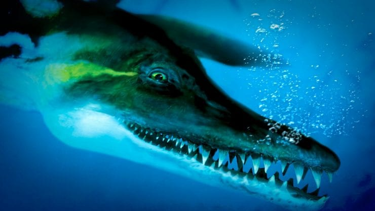Pliosaurus! Face to face with a Jurassic beast