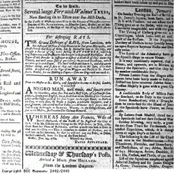 Cut out of Felix Farley's Bristol Journal advertising slavery