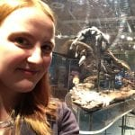Vicky Fish - Pliosaurus volunteer