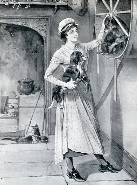 Black and white illustration of a lady holding a dog and a dog in a dogwheel
