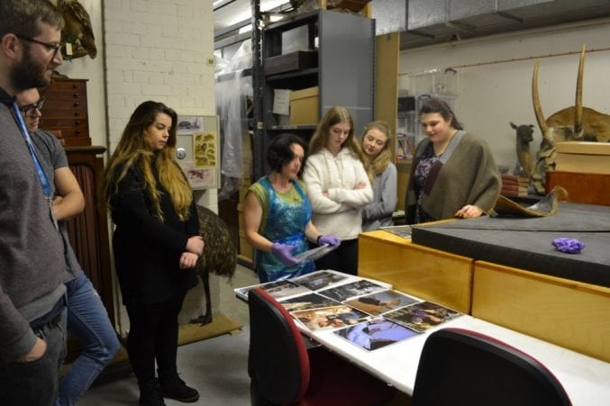The Youth Panel in the basement of Bristol Museum inspecting specimens in the Natural History store