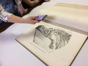 A drawing of a fossil being photographed by one of the young exhibition producers