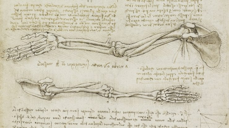 Leonardo: Amazing Anatomy for Home Educating Families (Age 8-11)