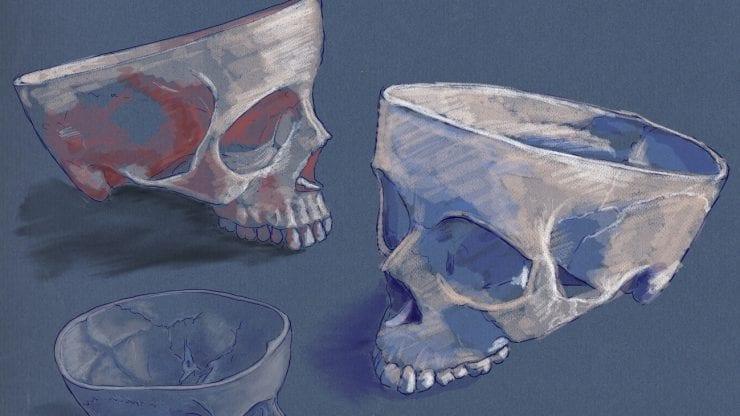 Anatomy still life drawing