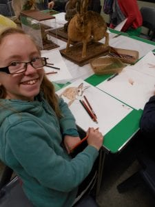 A young girl smiling at the camera. There is a sketchbook and a hare specimen.