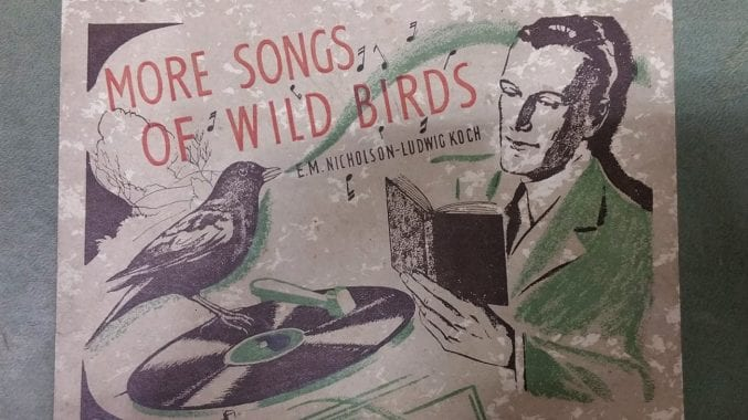 Black, white and green poster entitled ' More Songs of Wild Birds'. On the poster there is a man reading a book and a bird on a record player with music notes coming out its beak.