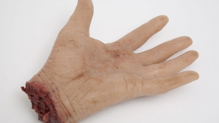 immitation model of a severed hand