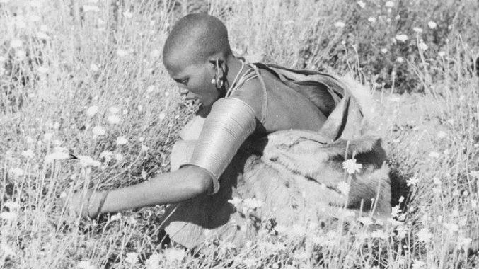 Kenyan woman picking pyrethrum, 1930sers