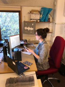 Philippa Lewis sat a desk working at a computer