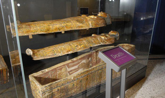 KS2 webinar: The Mystery of Mummy Ha7386