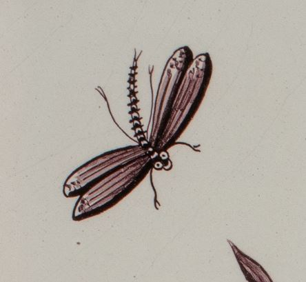 A close-up of a dragonfly from a tile