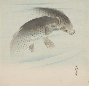 A Japanese print showing two koi carp