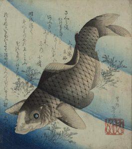 A Japanese Print depicting a carp swimming upstream